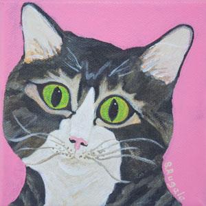 Dora Cat Masked Brown Tabby Cat