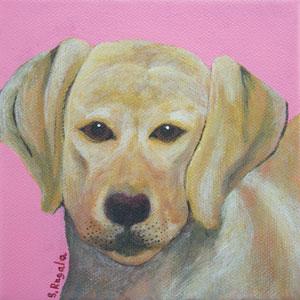 Yellow Lab Original Acrylic Painting by Sally Rugala