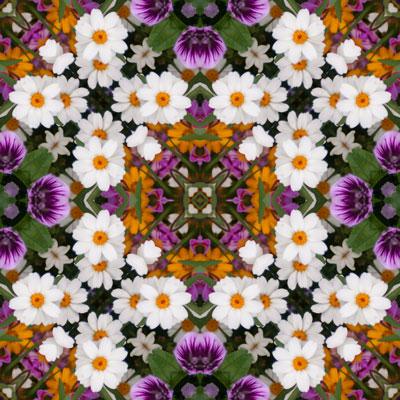 WEB_cross_mirror_by_sally_rugala