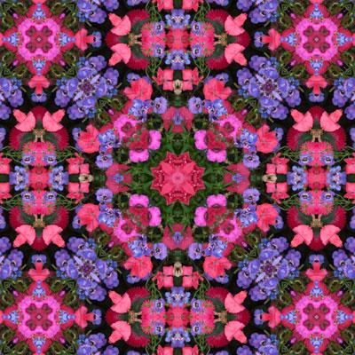 WEB_purple_pink_large_panel1_part1_8x8